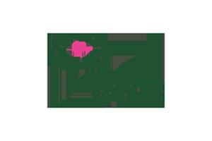 vgb Vereniging van Groothandelaren in Bloemkwekerijprodukten